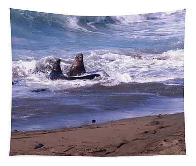 Elephant Seals In The Sea, San Luis Tapestry