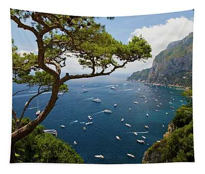 Elevated View Of Blue Waters Tapestry
