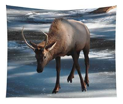 Elk On Ice Tapestry