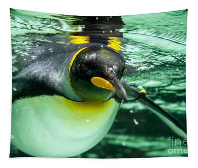 King Penguin Tapestry