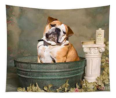 English Bulldog Photographs Wall Tapestries