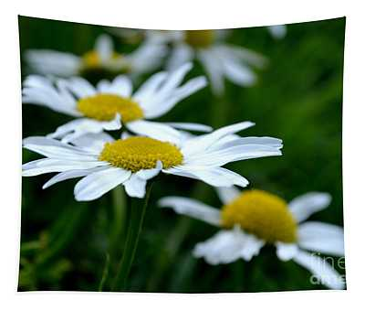 English Daisies Tapestry