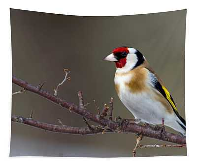 European Goldfinch  Tapestry