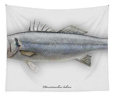 European Seabass Dicentrarchus Labrax - Bar Commun - Loup De Mer - Lubina - Havabor - Seafood Art Tapestry