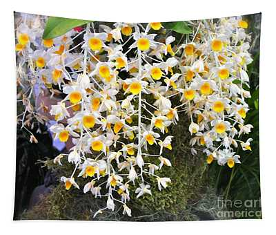 Exotic Aerides Tapestry