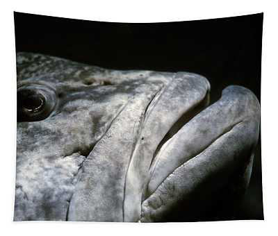 Eye And Mouth Of Grouper Fish Tapestry