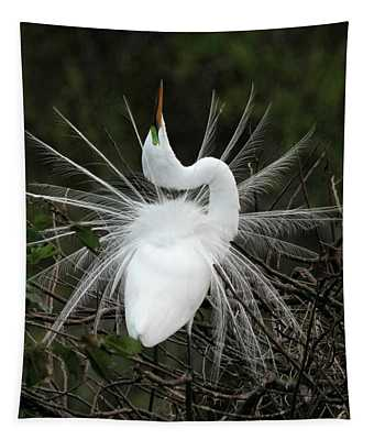 Fabulous Feathers Tapestry
