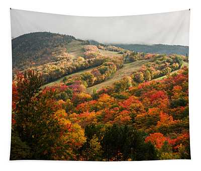 Fall Foliage On Canon Mountain Nh Tapestry