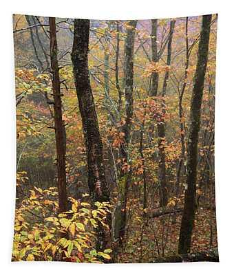 Fall Mist Tapestry
