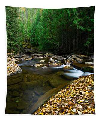 Fallen Autumn Color Leaves And Forest Tapestry