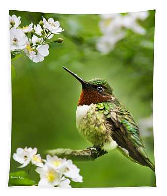 Fauna And Flora Hummingbird Square Tapestry