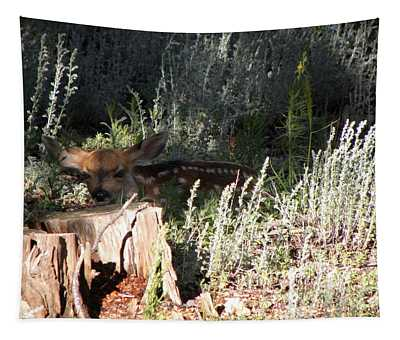 Fawn Front Yard Divide Co Tapestry