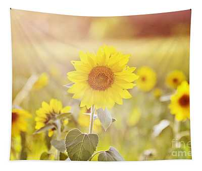 Field Of Sunshine Tapestry