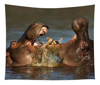 Fighting Hippo's Tapestry