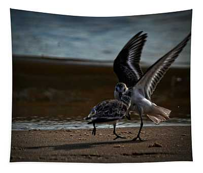 Fighting Sandpipers Tapestry