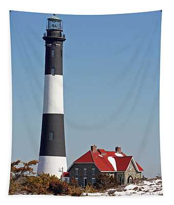 Fire Island Snow Tapestry