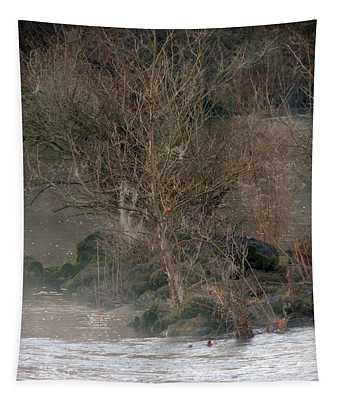 Flint River 19 Tapestry