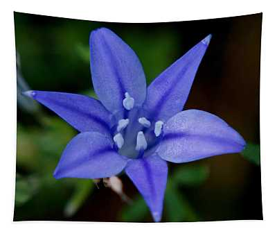 Flower From Paradise Lost Tapestry