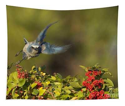 Flying Florida Scrub Jay Photo Tapestry