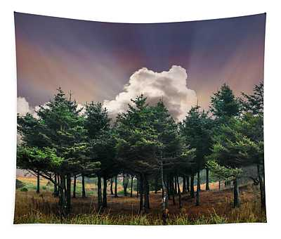 Forest Dawn Tapestry