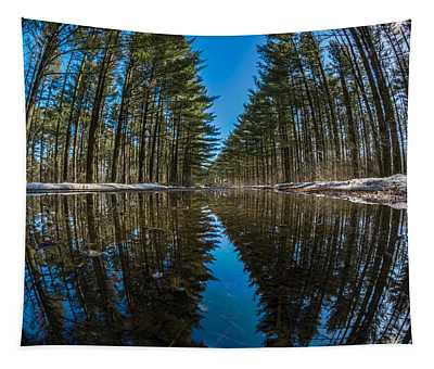 Forest Reflections Tapestry