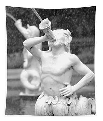 Forsyth Park Fountain - Black And White 1 2x3 Tapestry