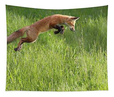 Fox Jumping In A Grass Field  Montreal Tapestry