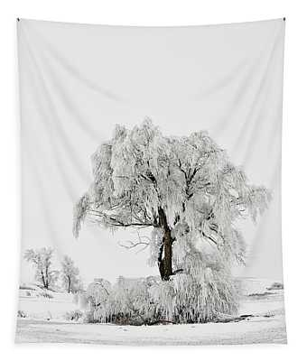 Frosted Tapestry