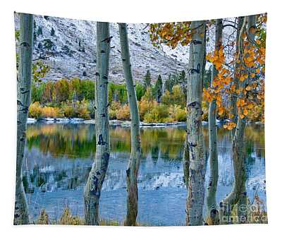 Tapestry featuring the photograph Frozen Lake Framed By Aspen  by Mae Wertz