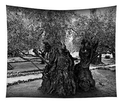 Garden Of Gethsemane Olive Tree Tapestry