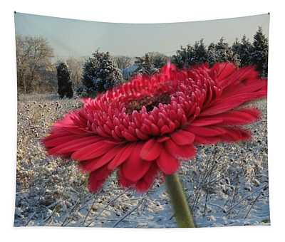 Gerbera Daisy In The Snow Tapestry