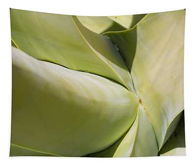 Giant Agave Abstract 9 Tapestry