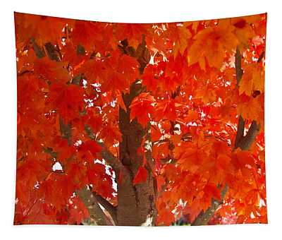 Glowing Fall Maple Colors 2 Tapestry