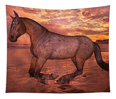 Golden Hour Pause Tapestry