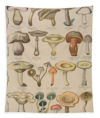 Good And Bad Mushrooms Tapestry