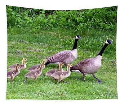 Goose Step Tapestry