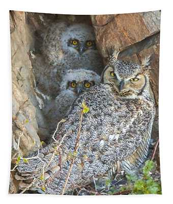 Great Horned Owl And Owlets Tapestry by Perspective Imagery