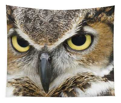 Great Horned Owl Tapestry