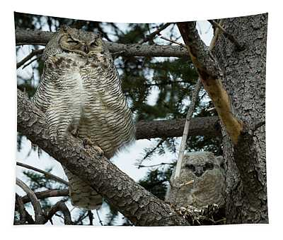 Great Horned Owls Tapestry