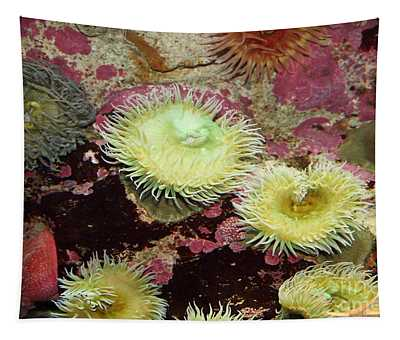 Green Anemone 5d24879 Tapestry