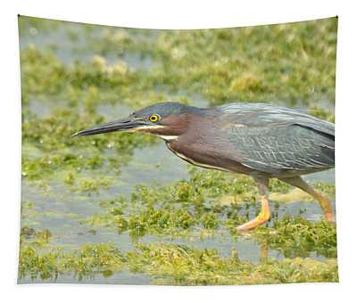 Green Heron On The Hunt Tapestry
