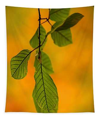 Green Leaves In Autumn Tapestry