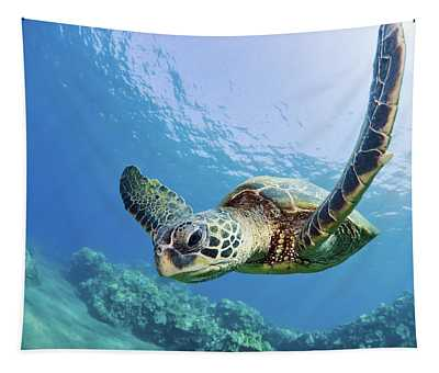 Green Sea Turtle - Maui Tapestry