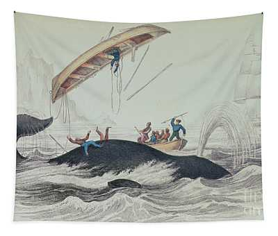 Seascape Drawings Wall Tapestries