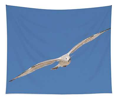 Gull In Flight - 2 Tapestry