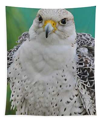 Gyrfalcon Tapestry