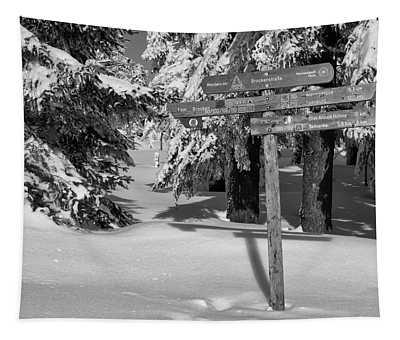 Winter Wonderland Harz, Germany Tapestry