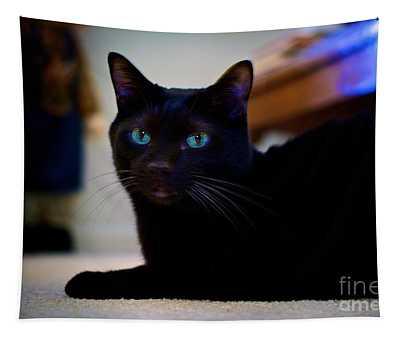 Havana Brown Cat Tapestry