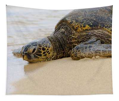 Hawaiian Green Sea Turtle 3 Tapestry