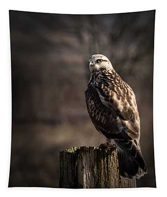 Hawk On A Post Tapestry